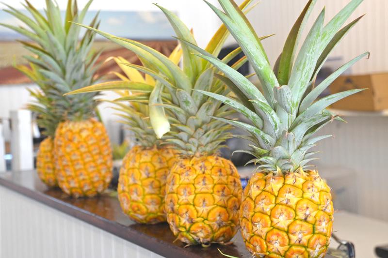 ハワイのパイナップル