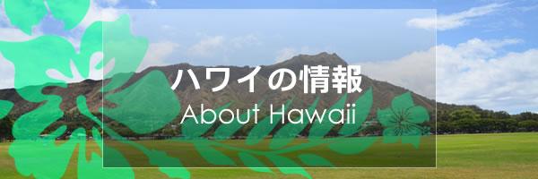 ハワイの情報