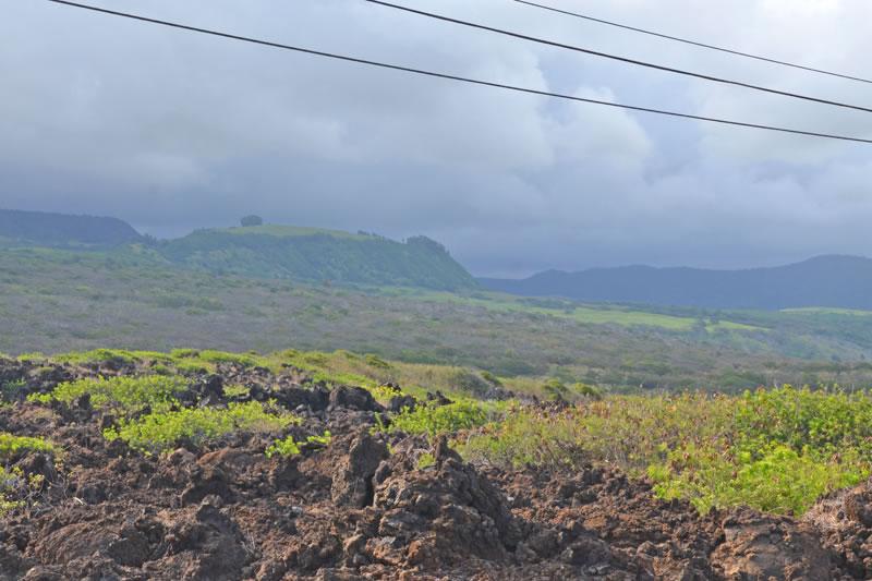 ハワイ島南部の景色