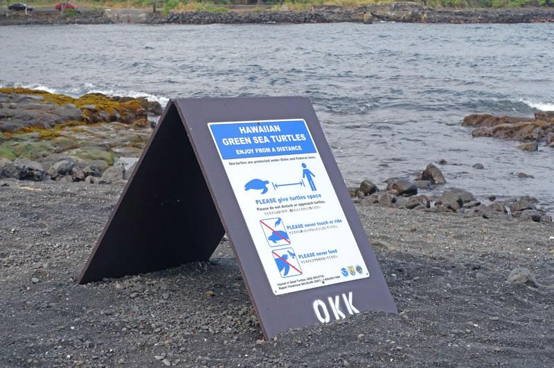 ウミガメに対する注意看板