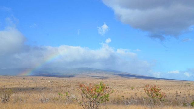もモロカイ島の虹