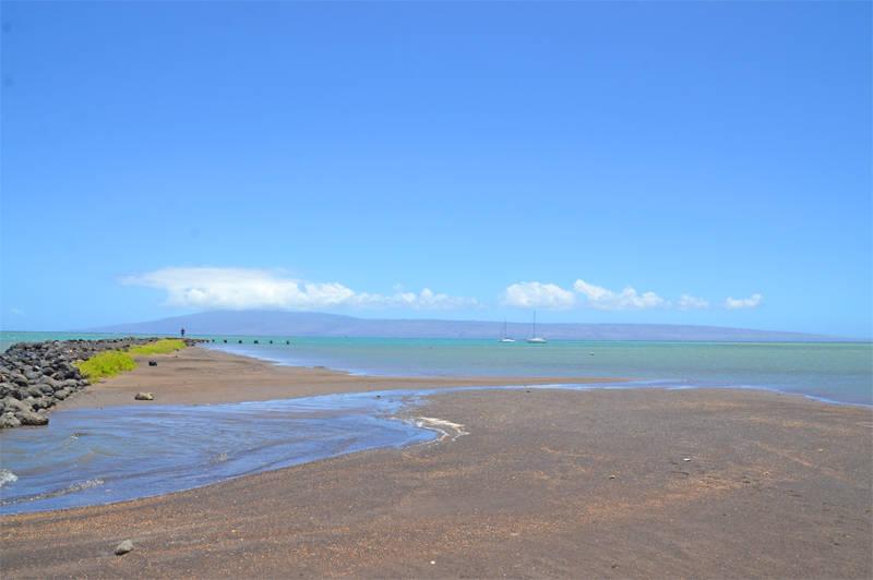 ハワイのフィッシュポンド