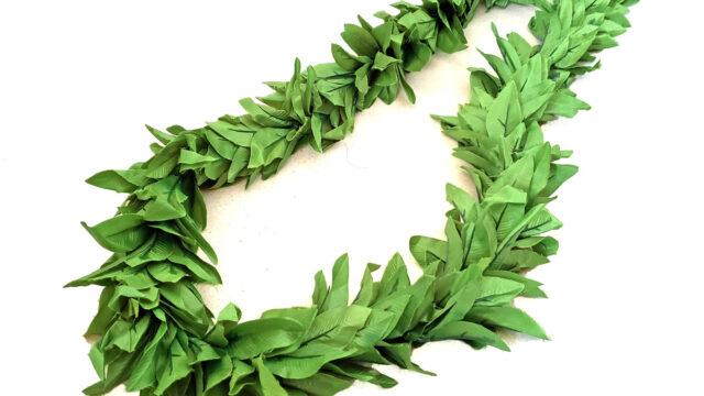 マイレ トリプルレイ1トーングリーン大きめの葉
